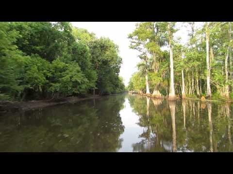 Houma Louisiana Bayou