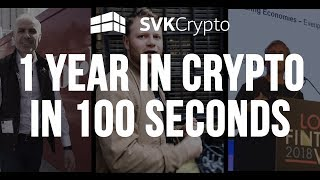 SVK Crypto... 1 year in Crypto in 100 seconds