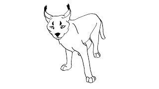 How to Draw a Caracal / Как нарисовать рысь