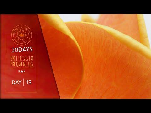 417 Hz + 714 Hz 》 Detoxifies Organs & Remove Negative Blocks | 30DAYS ⚕ Solfeggio Frequencies DAY13