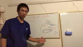 なぜ肝臓が頸部の関連痛につながるのか? 放散痛 検索動画 17