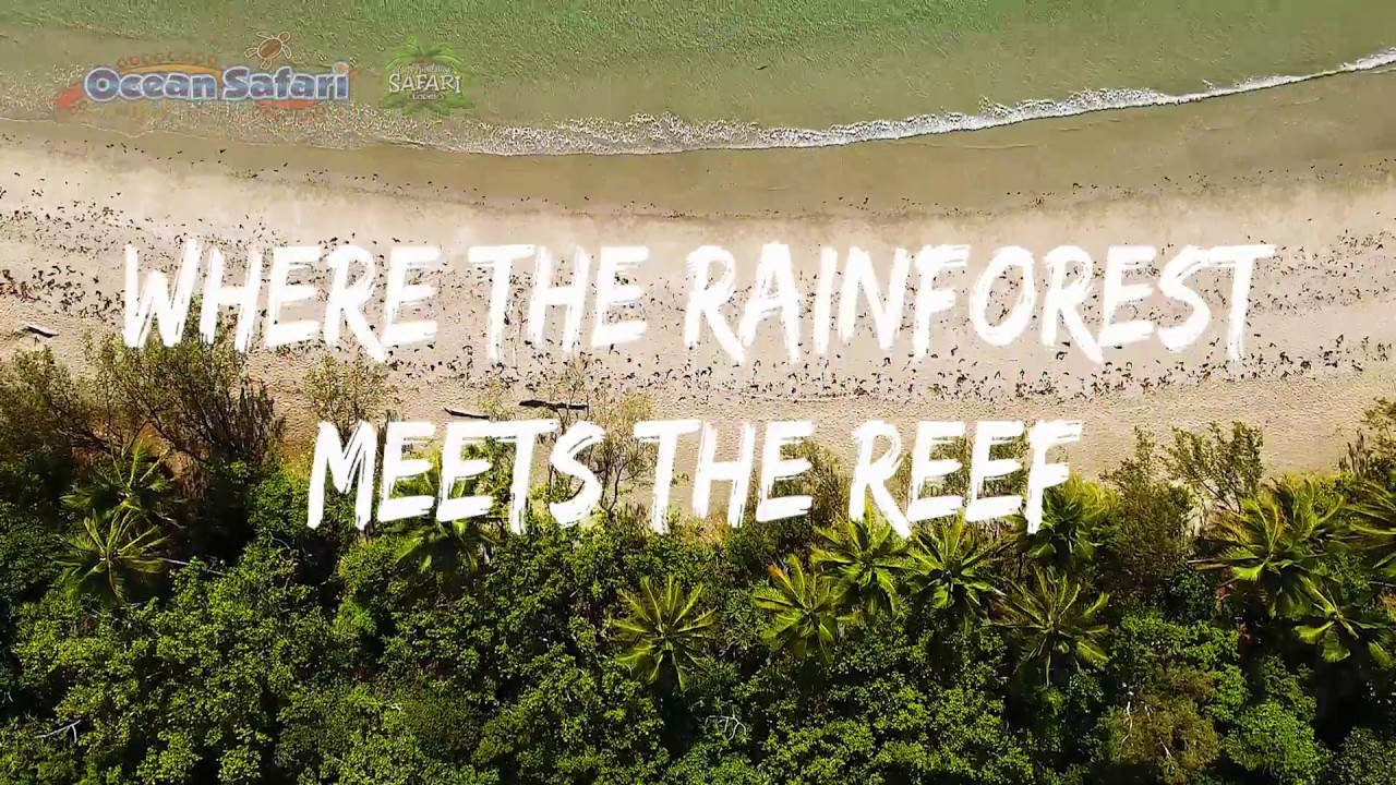 video Reef and Rainforest Package