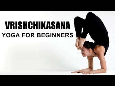 vrishchikasana  yoga for beginners  youtube