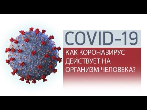 Как коронавирусная инфекция влияет на организм человека?