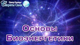 """Практический вебинар  """"Основы биоэнергетики"""". эзотерика"""