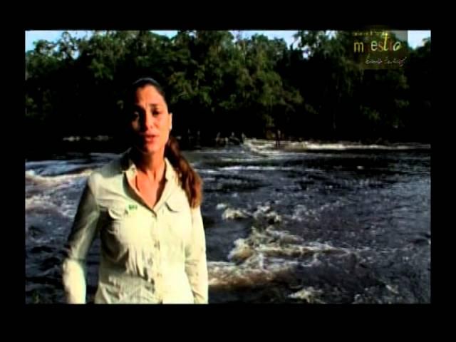 CONVERSANDO COM O MAESTRO   NOVA AMAZÔNIA
