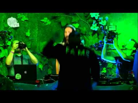 Tomorrowland 2013 - Steve Aoki