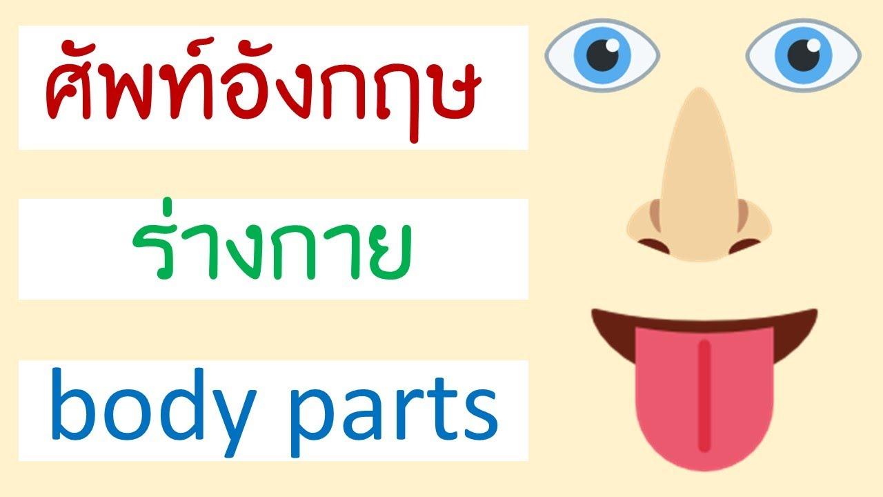 คำศัพท์ ร่างกาย ภาษาอังกฤษ Body parts
