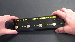 Tech 21 MIDI Mongoose Battery Installation