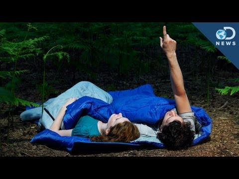 Can Camping Cure Insomnia?