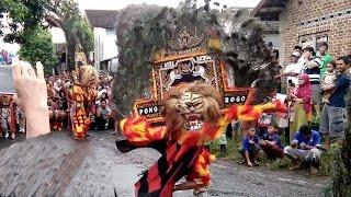 Reog Ponorogo Kesurupan Macan Wilis Kepala Kuntet
