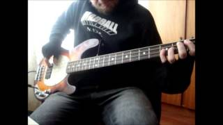 Red Hot Chili Peppers - How it Ends (bass cover)