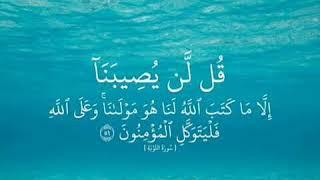 """""""🌹قل لن يصيبنا الا ما كتب الله لنا هو مولانا و علي الله فليتوكل المؤمنون 🌹 """""""