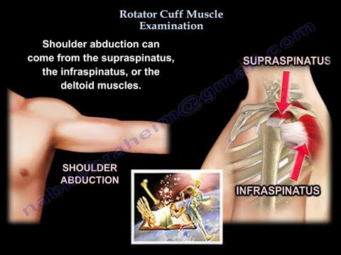Rotator Cuff Pain In Arm And Hand