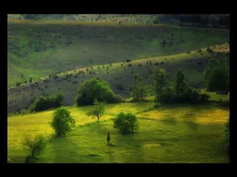 Selo gori a baba se ceslja Soundtrack Dragan Ilic