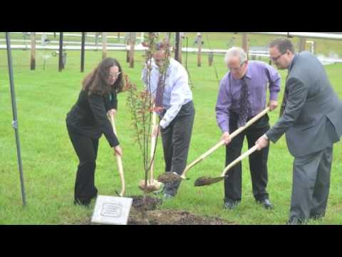 HSAAP and BAE Systems celebrated the plant's 75th year Wednesday morning by planting three trees dur