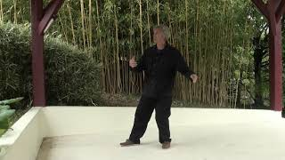 Forme style Yang selon Fu Zhongwen.