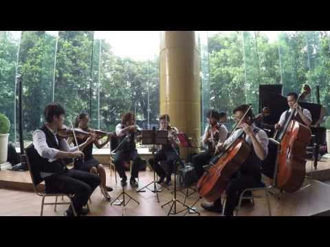 The Manila String Machine Cover of Fields of Gold by Sting