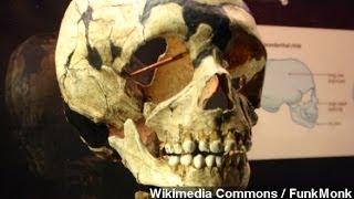 Blame Neanderthals For Our Disease Genes