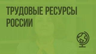 Трудовые ресурсы России. Видеоурок по географии 8 класс