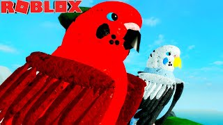 LIFE OF PIRIQUITO! THE BROTHERS and THEIR CRAZY FAMILY! -ROBLOX Feather Family | For children 🦅
