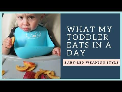 What my 1 year old eats in a day