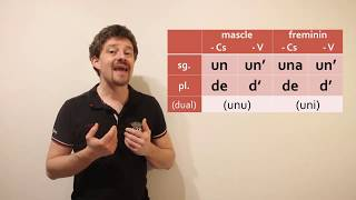 Lesson 7 de Nissart : l'article indefinit (+ l'article partitieu)