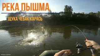 Река Пышма.Щука,чебак,карась. Рыбалка удалась! Все таки поймал речного карася!