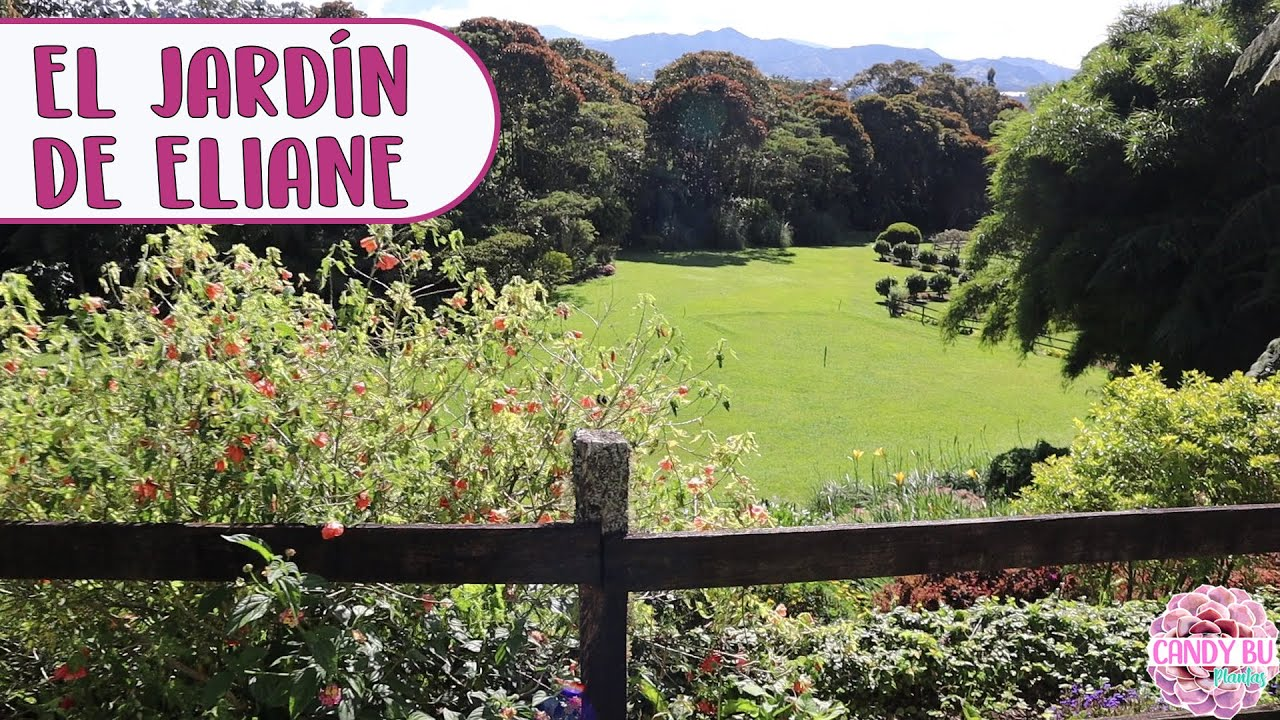 Un jardín con estilo Europeo en Colombia ¡Bellísimo recorrido!│Candy Bu