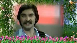 песни нашей молодости   виа Верасы  Малиновка