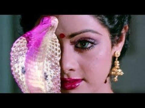 Main Nagin Tu Sapera | Sridevi  | Mahal Mashup | Gent & Jawns