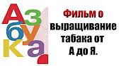 Сигареты в львове крупный b2b рынок львов ▻ all. Biz фото, описание минимальные цены, каталог компаний на https://lviv. All. Biz.
