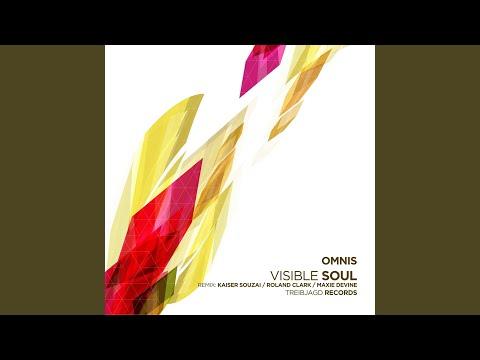 Visible Soul (Kaiser Souzai Remix)