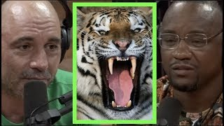 Joe Rogan | Would You Rather Die by Gorilla or Tiger? w/Yves Edwards