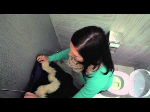 Les Toilettes - #1 Bibendum