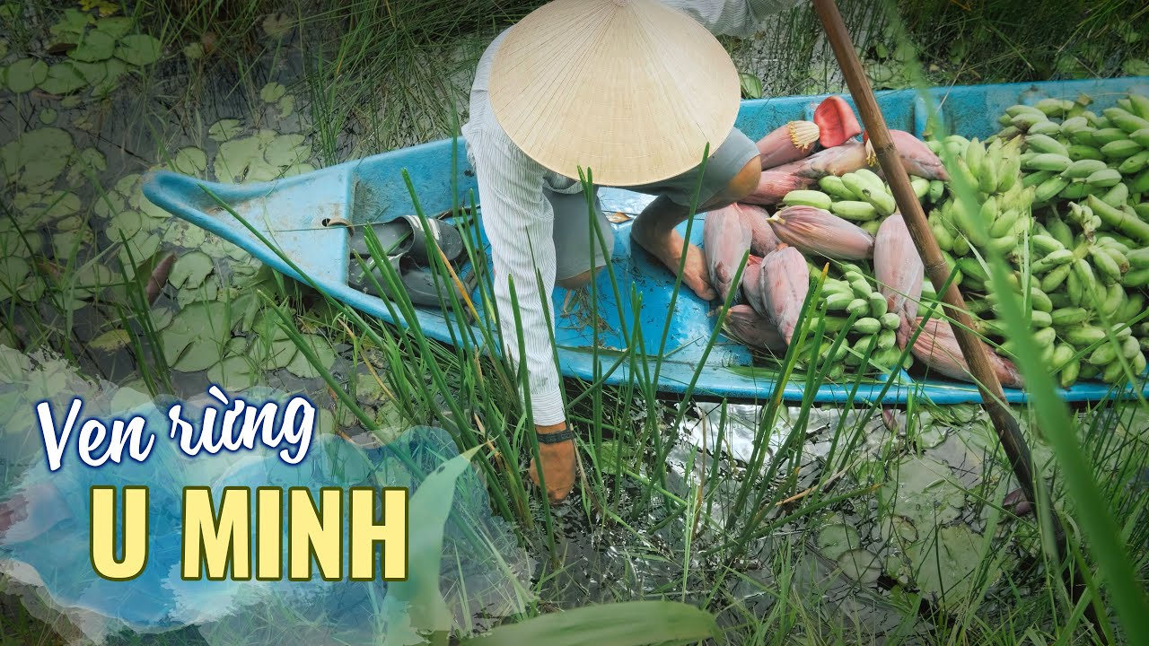Cuộc sống ven rừng U Minh, đặc sản này lạ quá! Du lịch ẩm thực Cà Mau Miền Tây