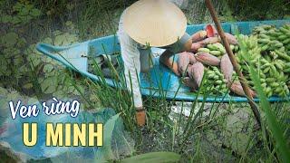 Cuộc Sống Ven Rừng U Minh đặc Sản Này Lạ Qua Du Lịch ẩm Thực Cà Mau Miền Tây