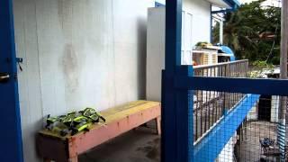 アキーラさん訪問①親日国パラオ・マラカル島・ベラウツアー,Belau-tour,Marakal-island,Palau