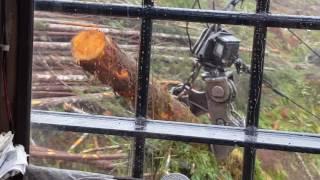 Thunderbird 255 with Falcon grapple camera