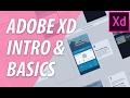 Adobe XD Intro & Basics   XO PIXEL