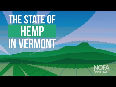 The State of Hemp in Vermont: A NOFA Vermont Update