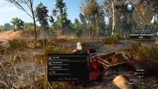 The Witcher 3 - Cheats with Trainer