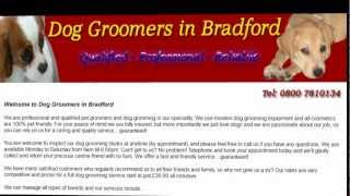 Dog Groomers In Bradford & Bradford Dog Grooming Services
