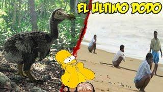 """""""Cagando en la Playa Encontre al Ultimo DODO"""""""