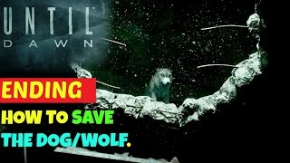 ENDING: How to Save the DOG/WOLF | UNTIL DAWN.