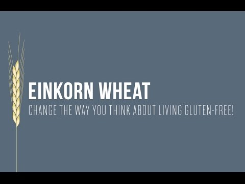 Einkorn Wheat: Change the Way You Think About Living Gluten-Free