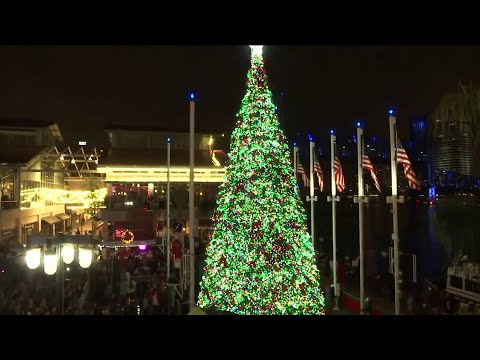 Crowds watch as Christmas tree lights up Jacksonville Landing