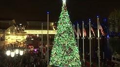 Crowds watch as Christmas tree lights up Jacksonville Landing