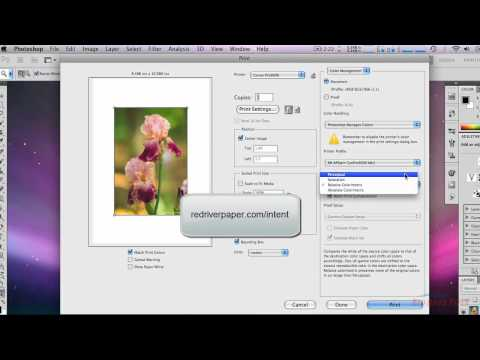 How to Add a GIF to a Still Image - Photoshop CS5 Tutorial (Mac) from YouTube · Duration:  3 minutes 45 seconds  · 94,000+ views · uploaded on 6/30/2013 · uploaded by Brady Tyler