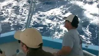 Bahamas Mahi-mahi Fishing With Brian Schoedel